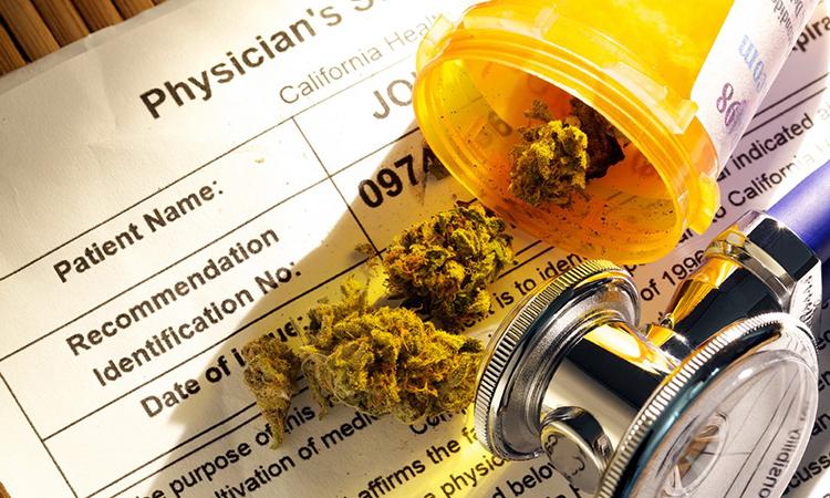 Maryland Marijuana Medical Card