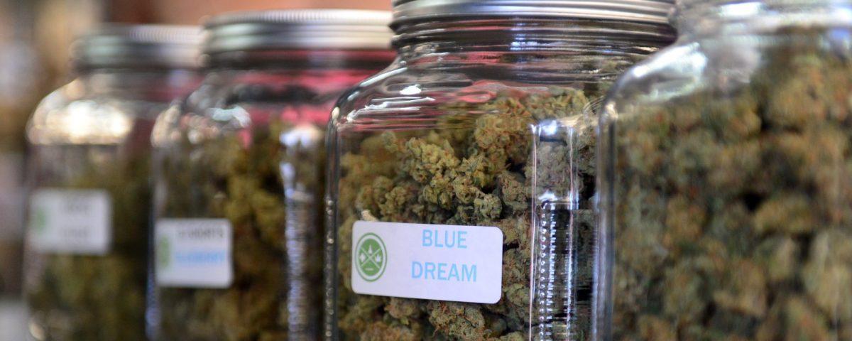 MetroXMD marijuana