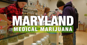 MARYLAND MEDICAL MARIJUANA DISPENSARIES